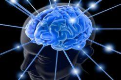 स्मरण शक्ति बढाउने ७ सजिला उपायहरु