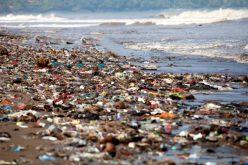 प्लास्टिकको प्रयोगले वातावरणमा पर्ने हानिकारक प्रभावहरु के के हुन ?